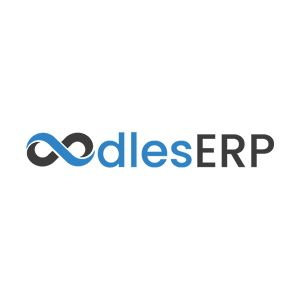 ERP Solutions Oodles