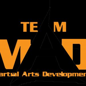 Martial Arts Development